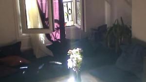 A la fenêtre - journal filmé d'une jeune femme